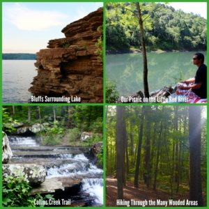Greers Ferry Natural Collage
