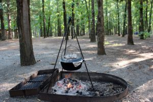 Nice fire rings. The grill folded back easily for me to use my tripod and dutch oven.