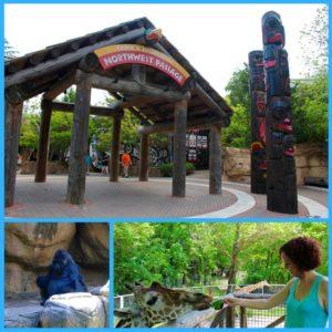 Memphis Zoo Collage