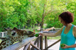 World Famous Memphis Zoo