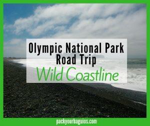 Olympic National Park Road Trip: Wild Coastline