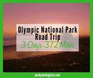 Olympic National Park Road Trip