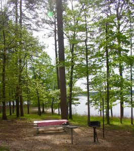 Why DeGray Lake is One of Arkansas's Best Lakes